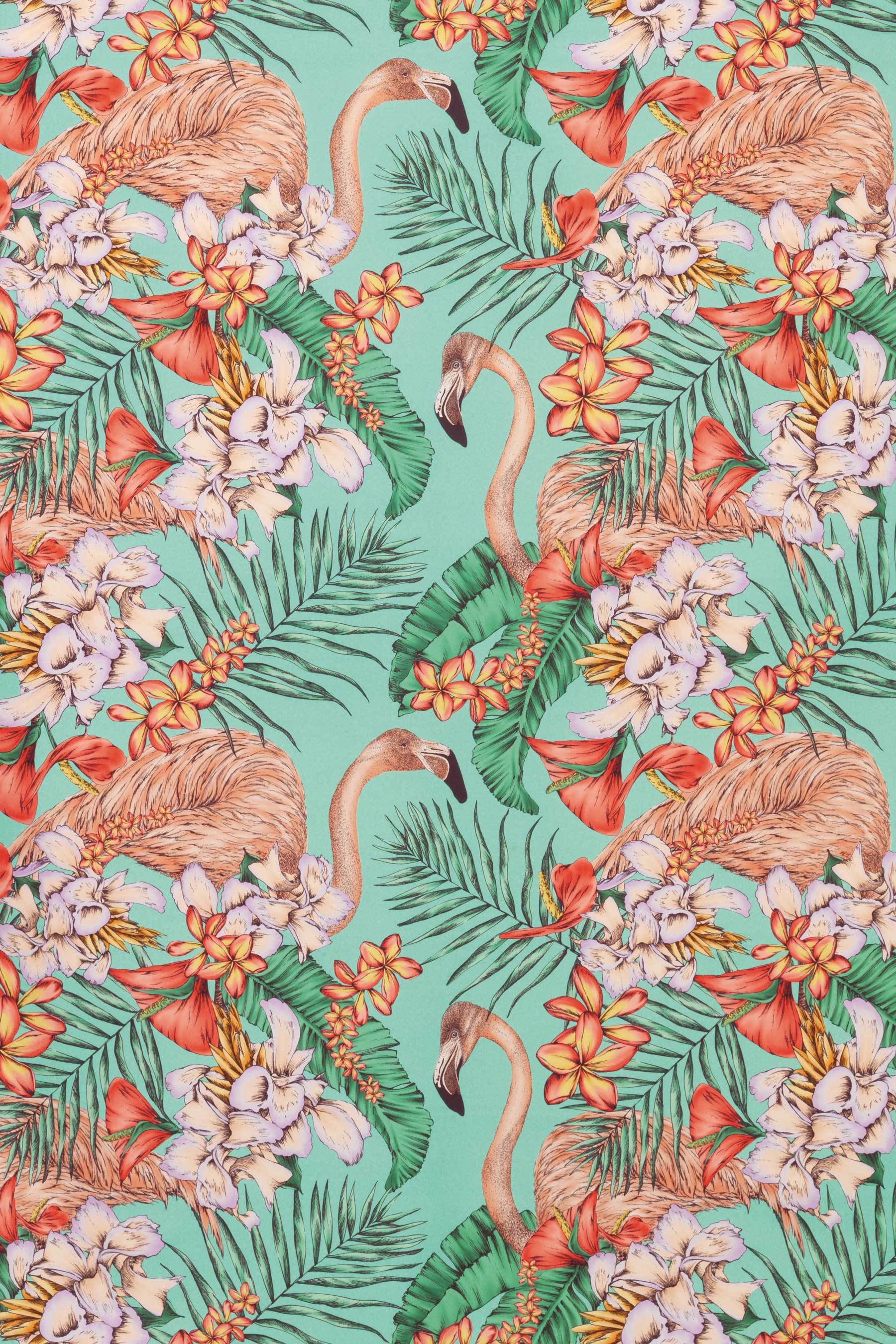 There's nothing like a flamingo to inject a touch of the tropics into your colour scheme